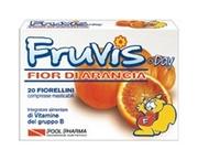 Fruvis Day Fior di Arancia 13g