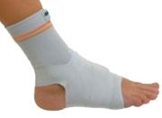 Dr Gibaud Ankle Ligaments 0604