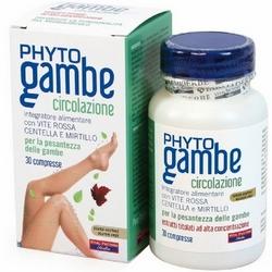 Phytogambe Compresse 30g