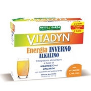 Vitadyn Energia Inverno Alkalino Bustine 70g